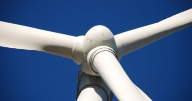 Jaka będzie przyszłość energii odnawialnej