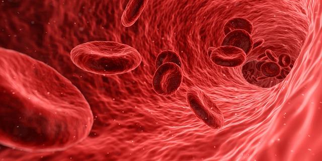 mikroorganizmy